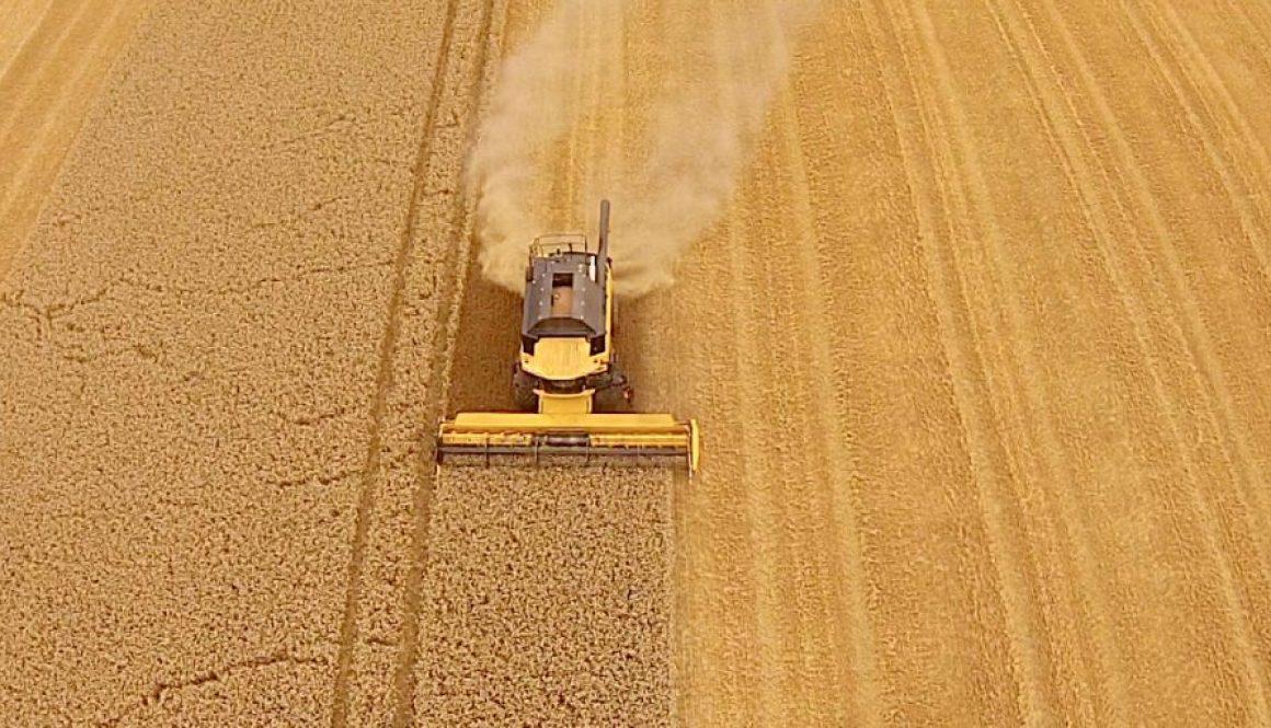 fi-harvest